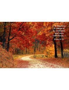 Carte postale - Sous Bois (0225)