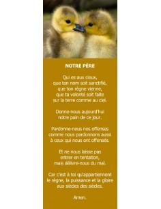 Signet - Canetons (réf.0232)