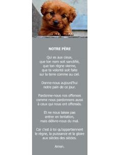 Signet - Chiot (réf.0233)