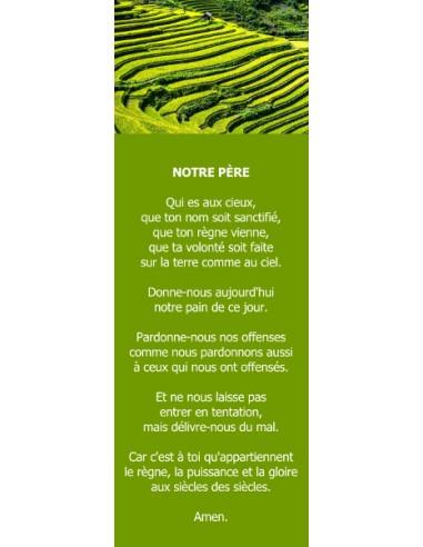 Signet - Rizière (réf.0238)
