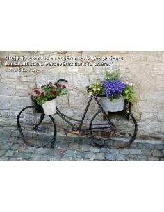 Carte postale - vélo avec fleurs