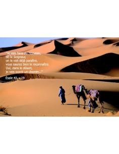 Carte postale - désert