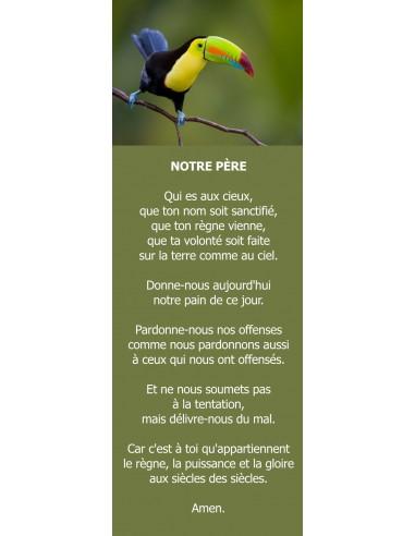 Signet toucan