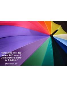 Carte postale - Parapluie multicolore (réf. 0128)