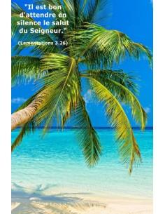 Carte postale - Plage Tropicale (réf. 0140)